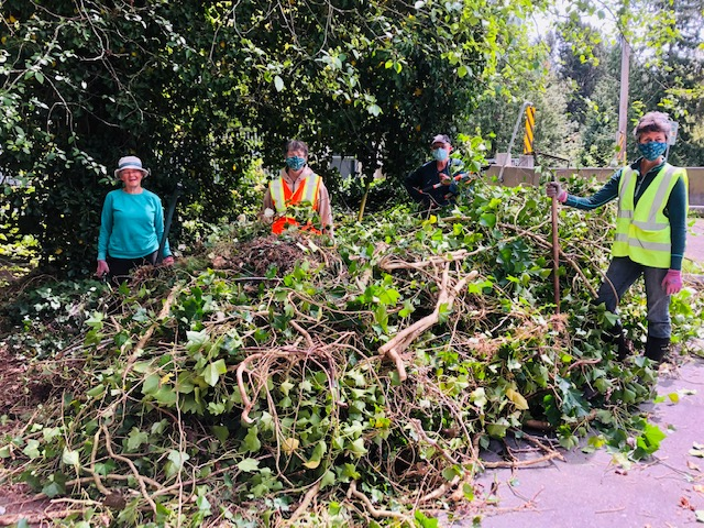 Chapman Creek Inv Removal May 8th PC Kelly